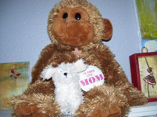 Snippet monkey