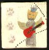 Cat_w_guitar